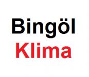 bingol-klima-servisi
